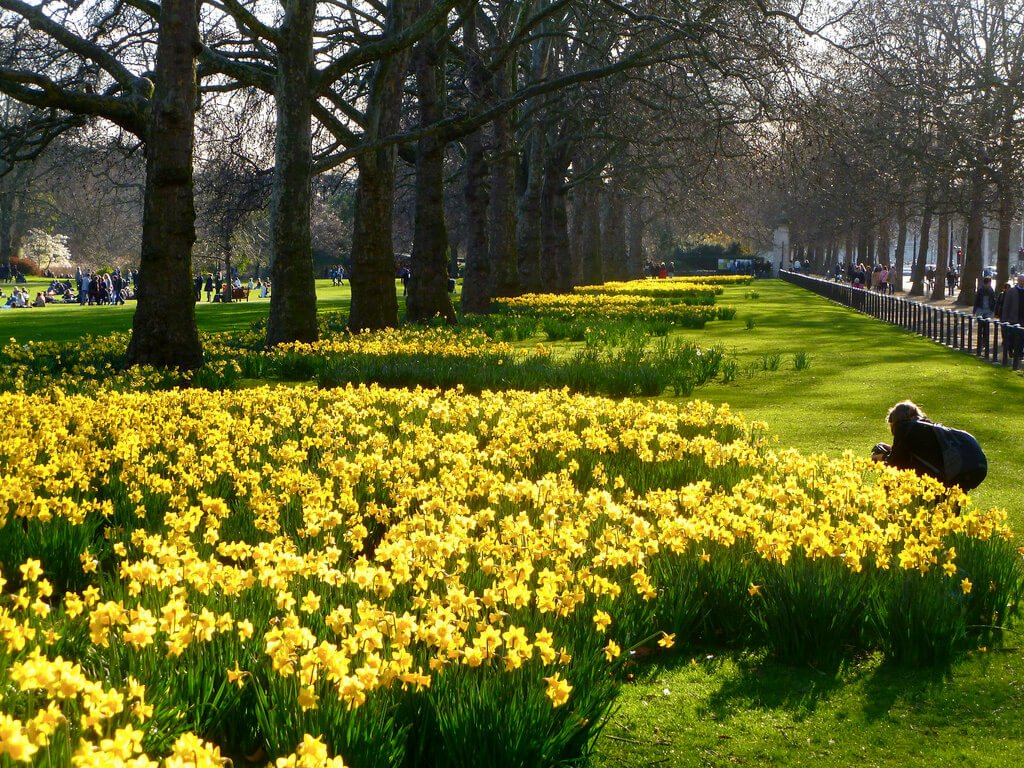 Reasons to Love London. Photo credit: Herry Lawford on Flickr