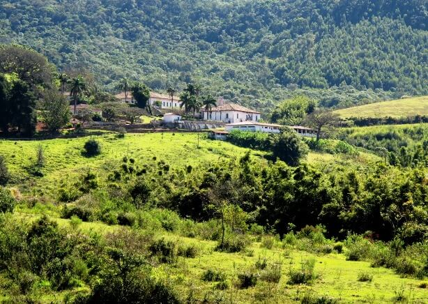 Brazil countryside