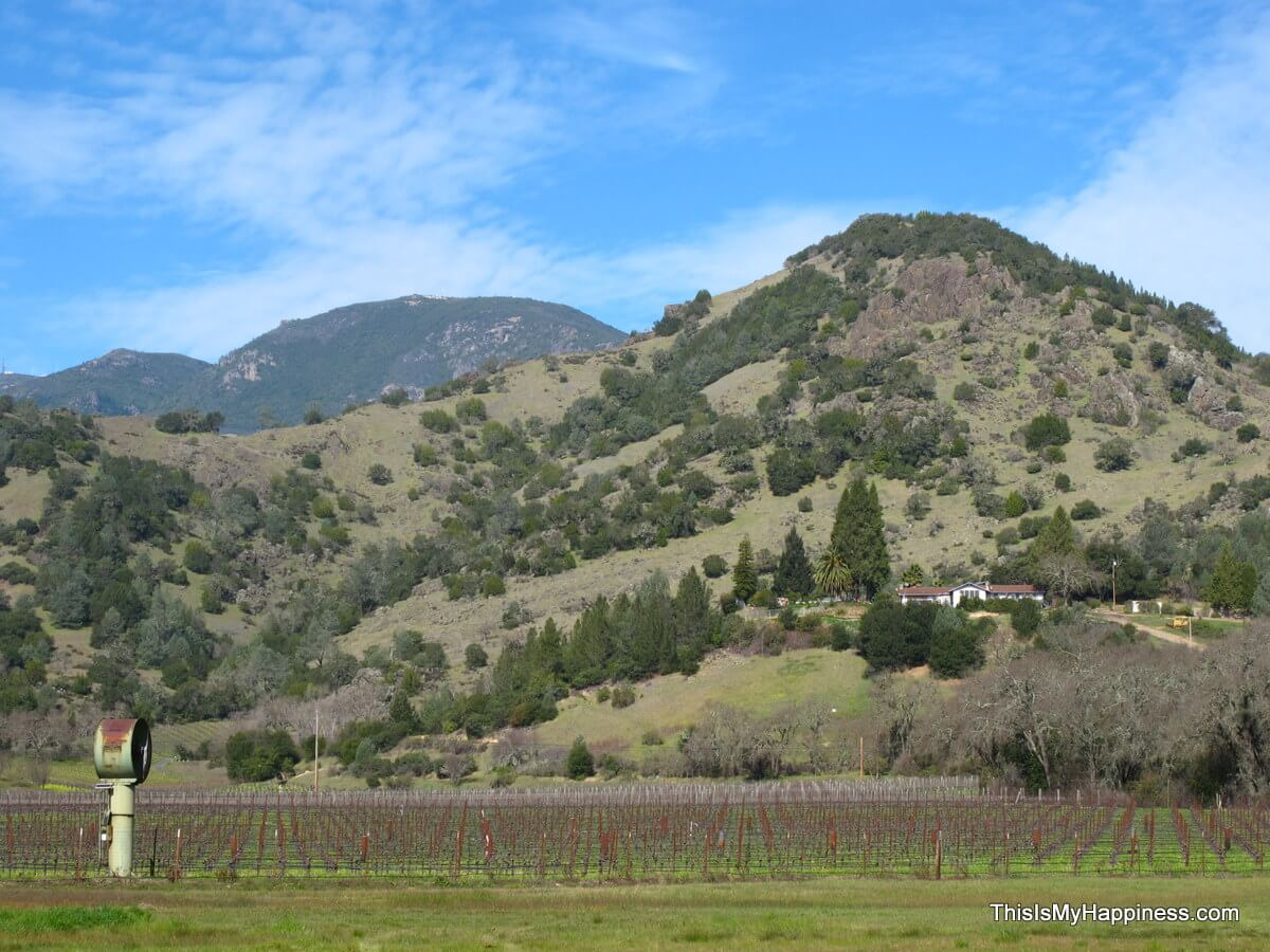 Calistoga mountains