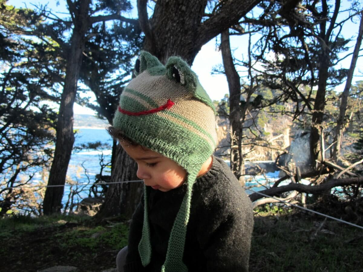 Point Lobos with kids