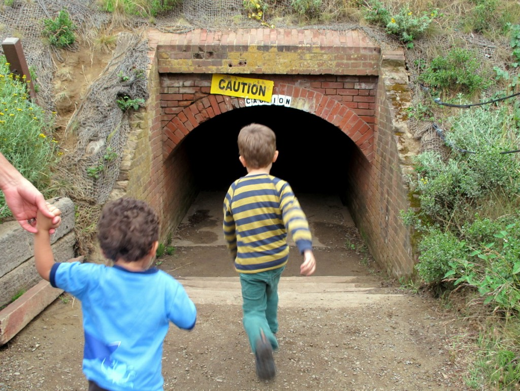 where to go in San Francisco with kids: Presidio National Park