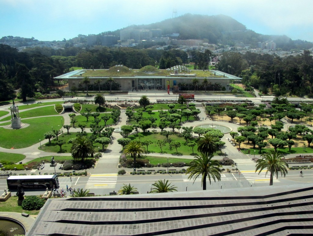 what to do in san francisco with kids: de young museum