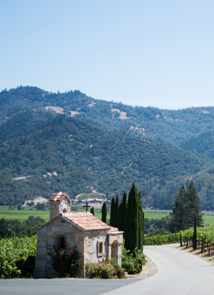 Budget travel tips for Napa Valley
