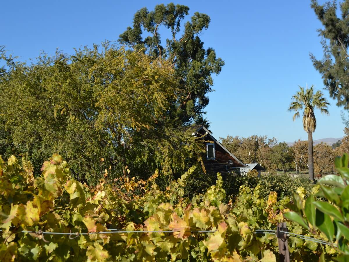Wine Country Find: Murrieta's Well Winery in Livermore, California: