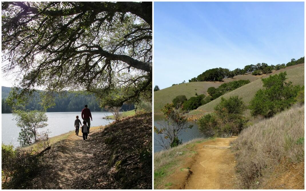 Nature in Marin County, California |This Is My Happiness travel blog