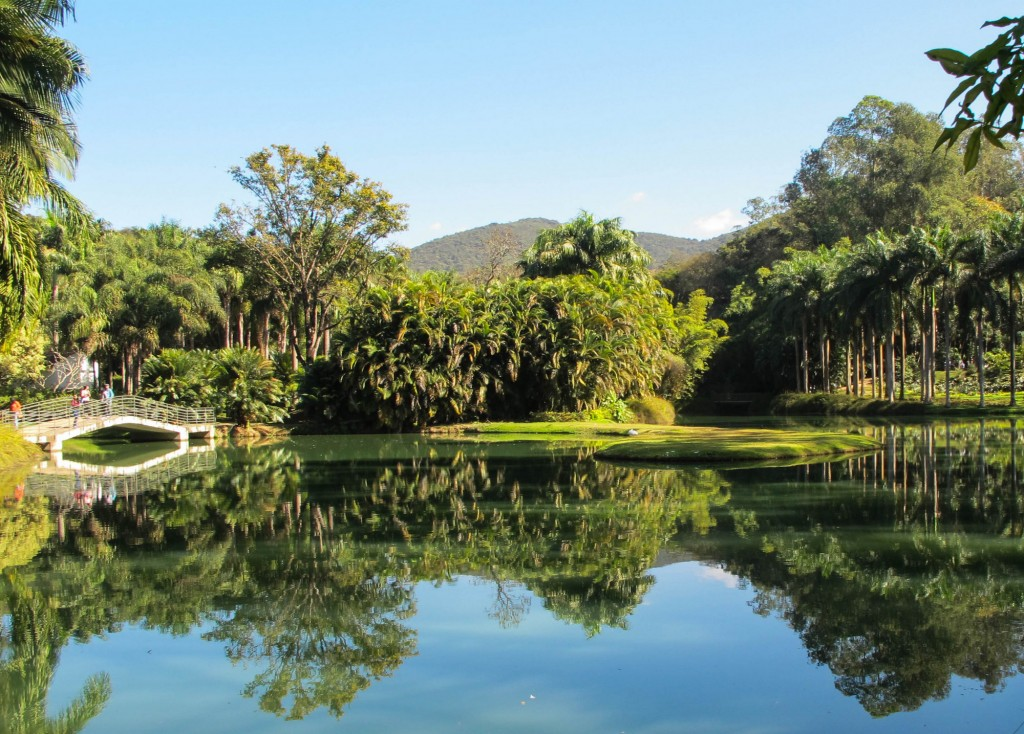 What to do in Minas Gerais: The Gardens at Inhotim