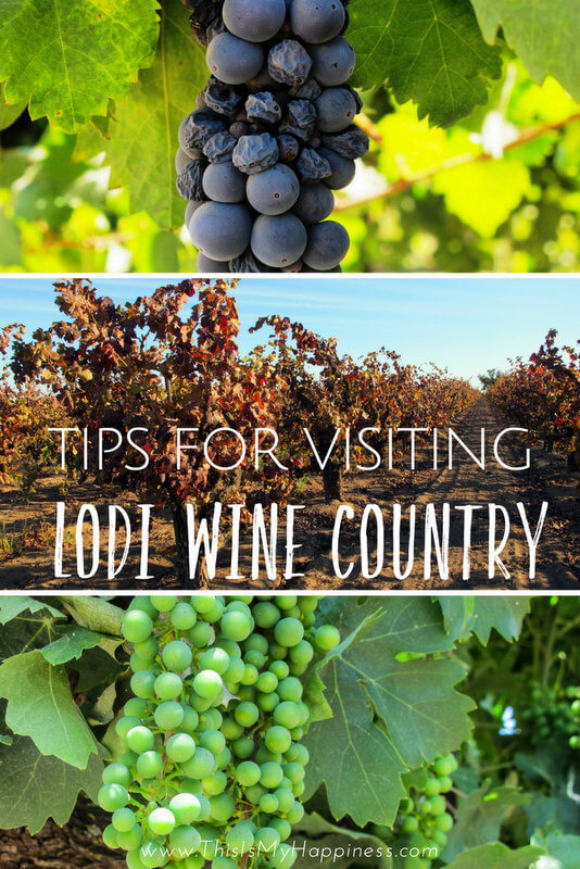 Tips for Visiting Lodi Wine Country
