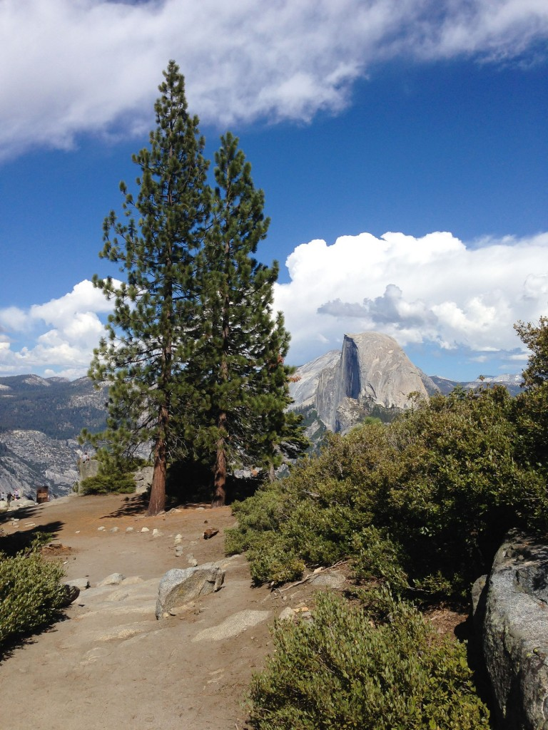 Photos and Tips from 3 Days in Yosemite | This Is My Happiness