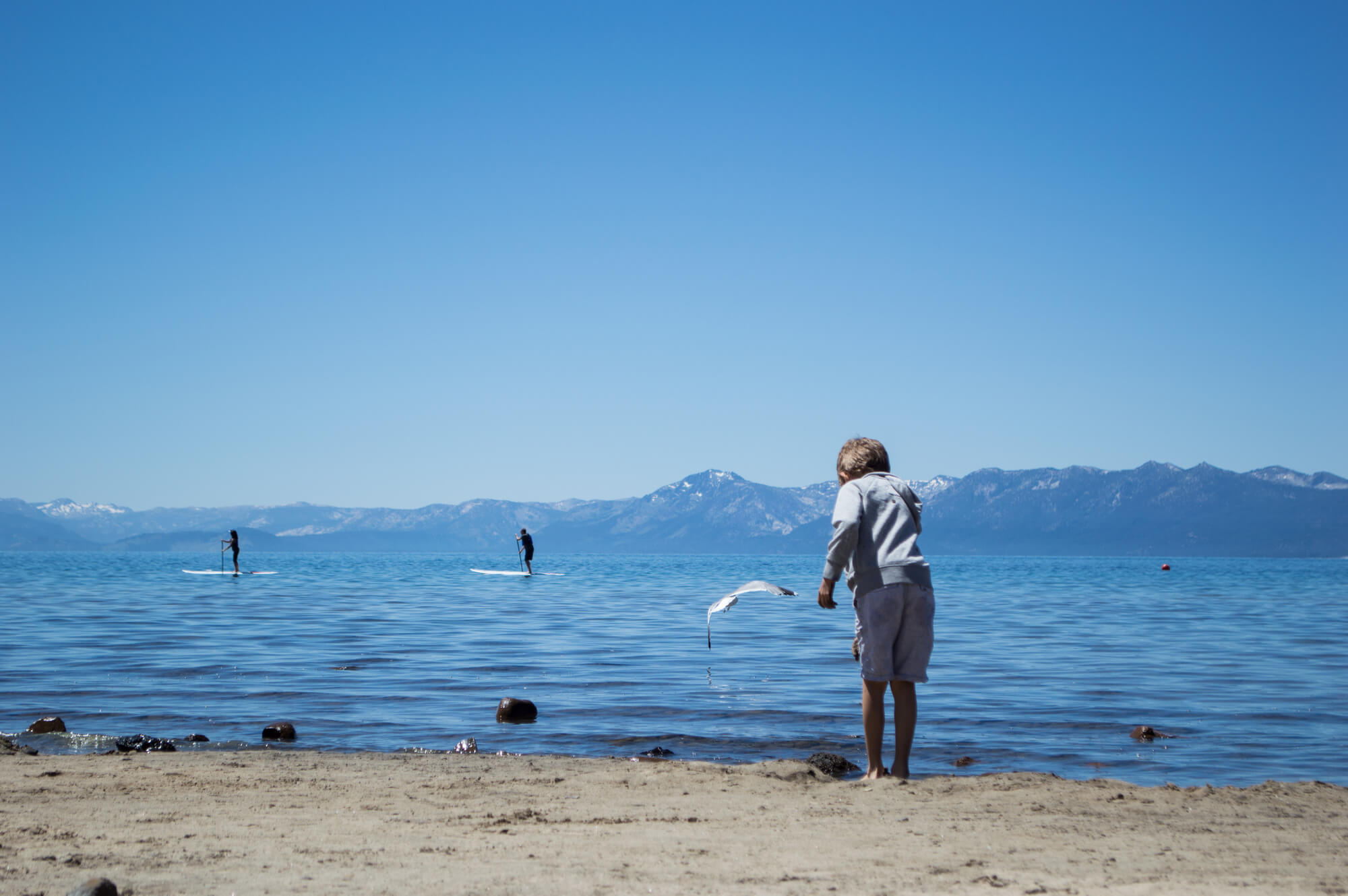 Free things to do Northern California | This Is My Happiness