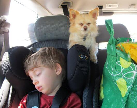 Best carseat for road trips
