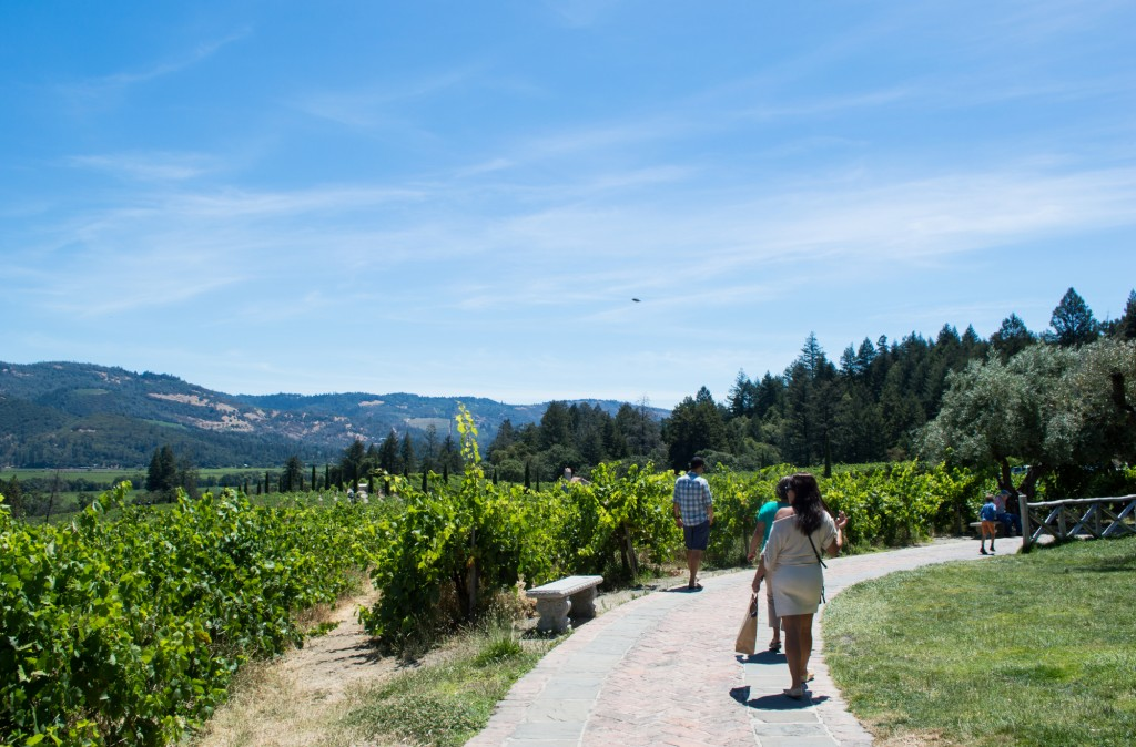 The Perfect Day Trip to Napa Valley | This Is My Happiness