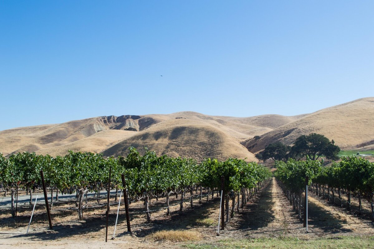 What to do in Northern California: visit Livermore Valley