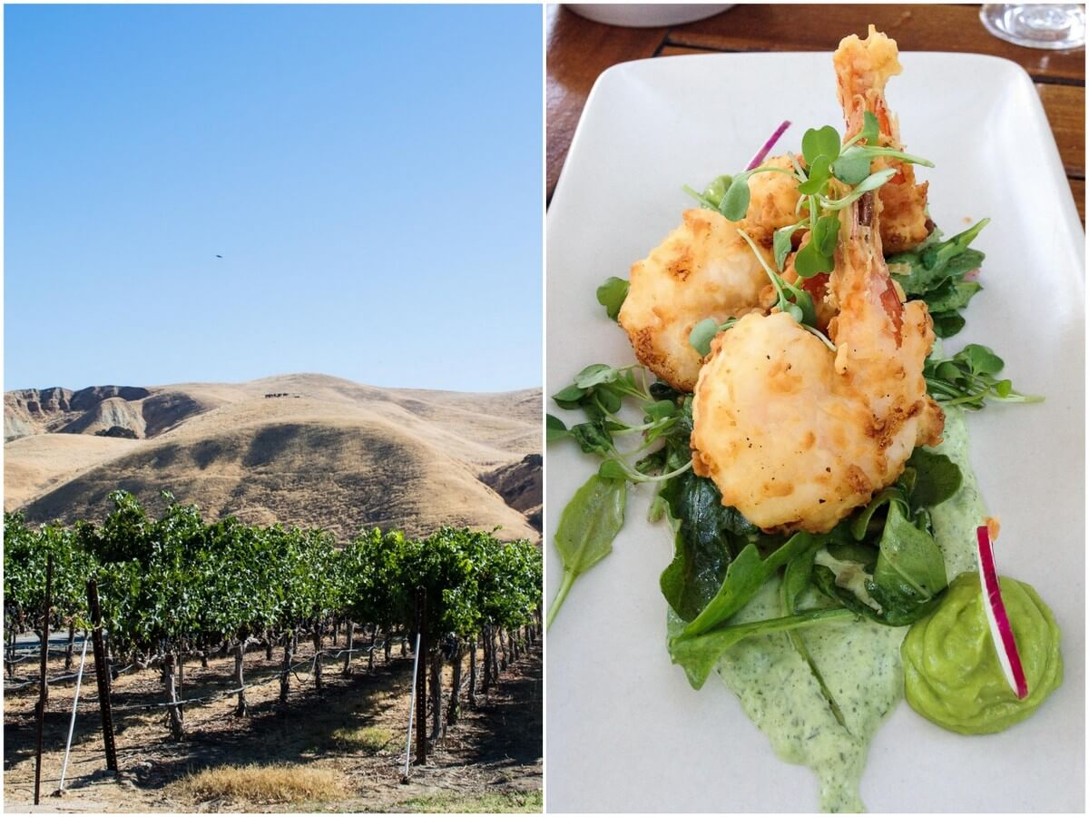 Wente Vineyards Livermore Valley: Livermore Valley Day Trip