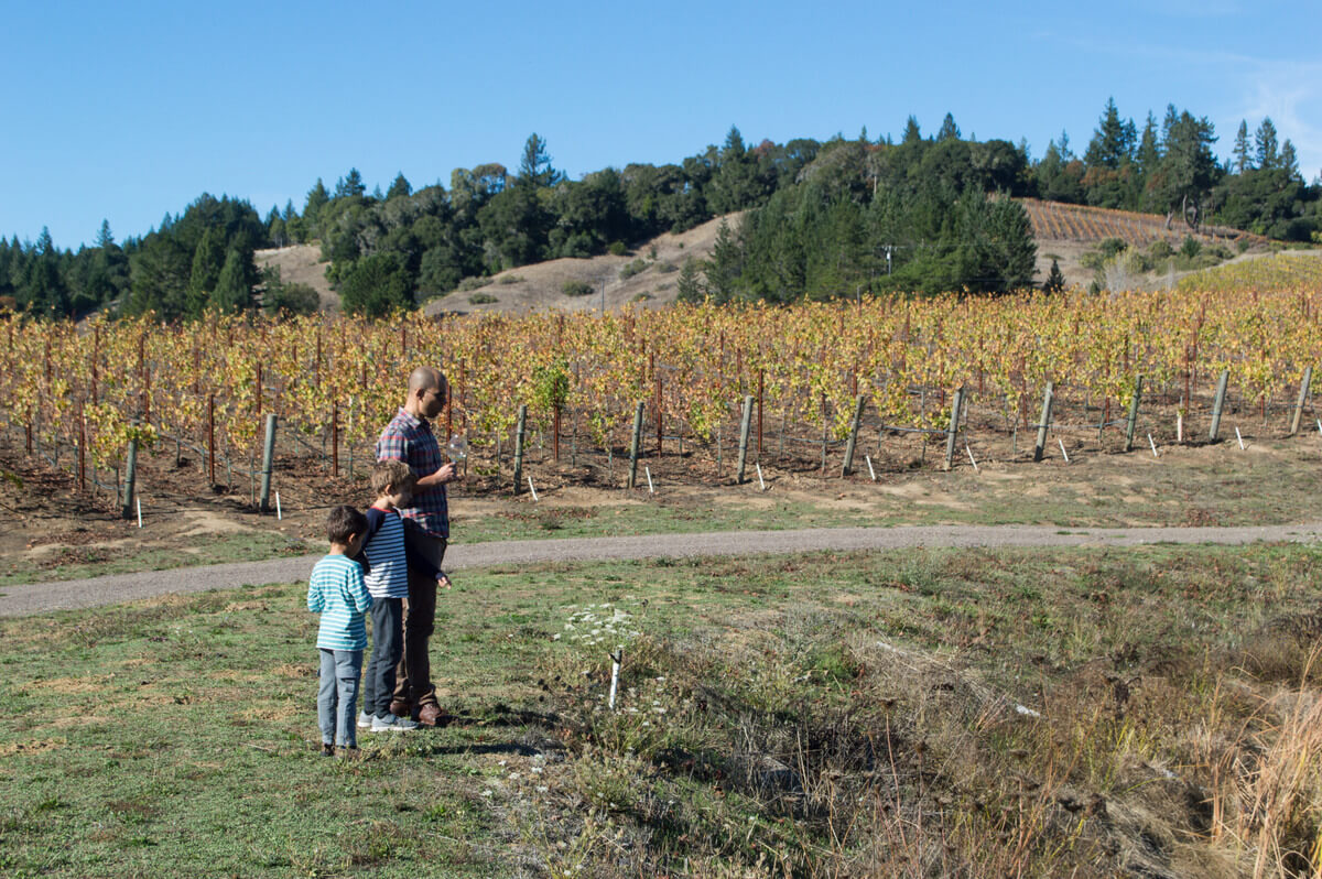 kid friendly winery Mendocino