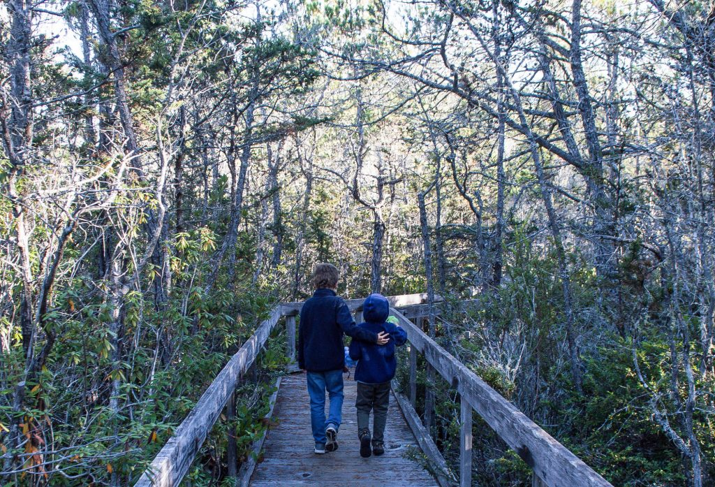Things to do with kids near Mendocino