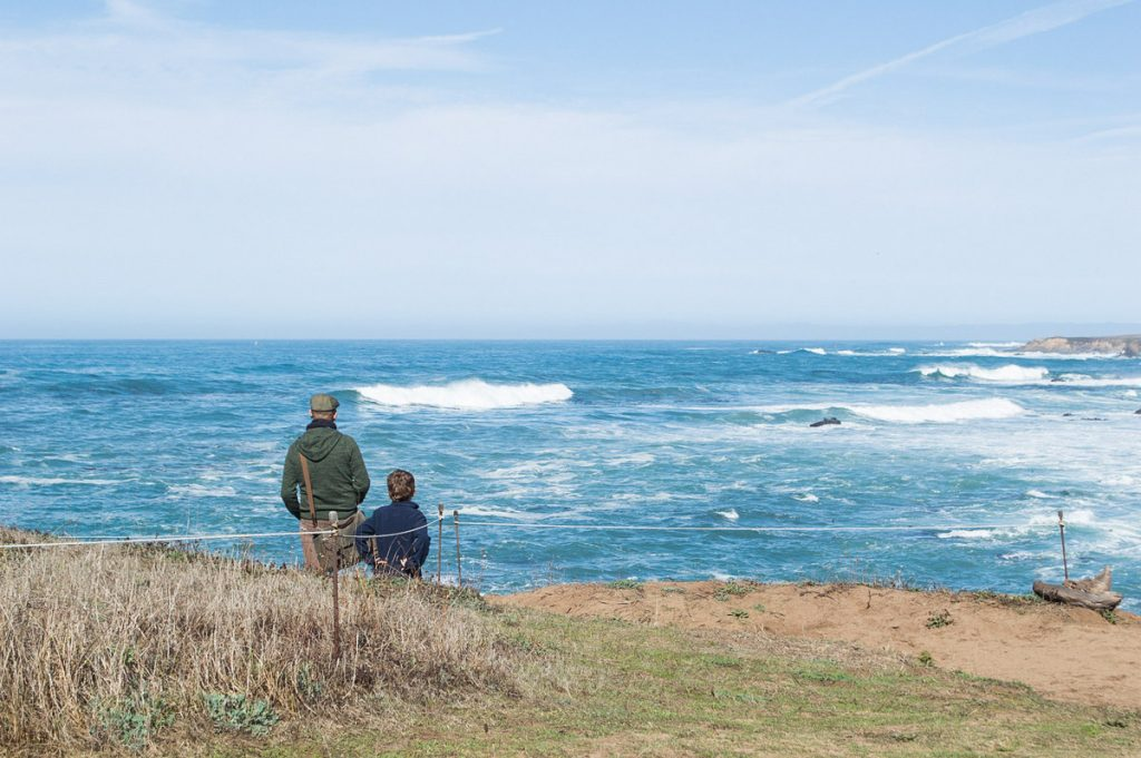 What to do in Mendocino with kids