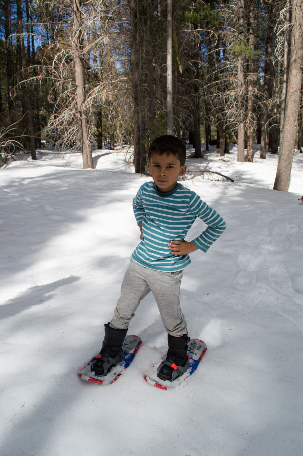 Where to snowshoe with kids Tahoe | This Is My Happiness.com