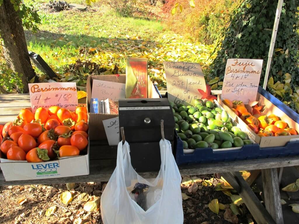 California fruit stand