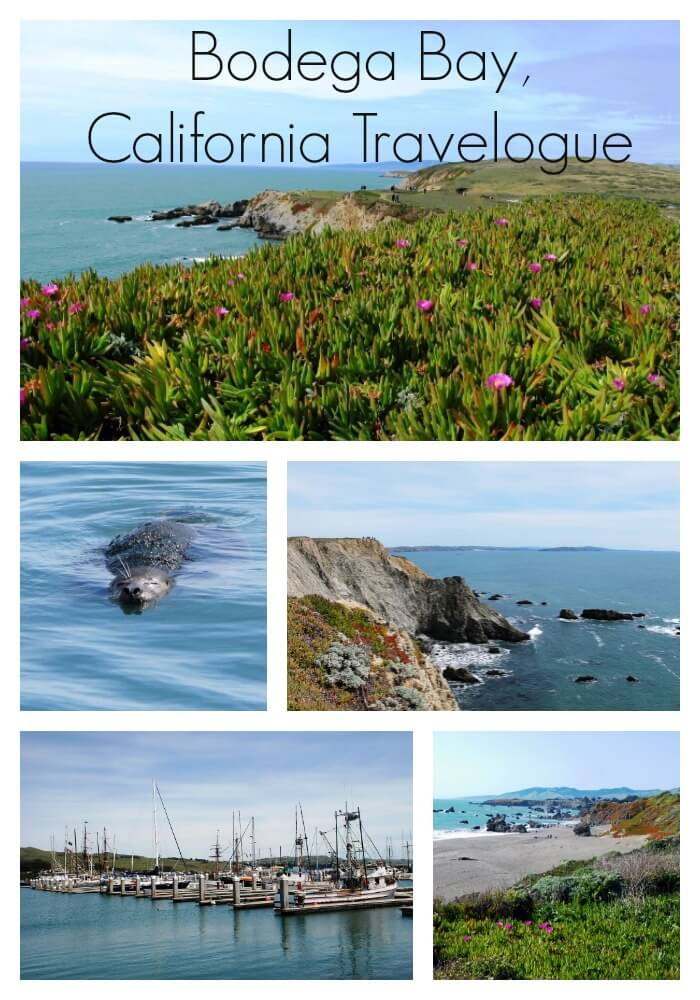 A Bodega Bay Weekend: Connecting (and Disconnecting) in Bodega Bay