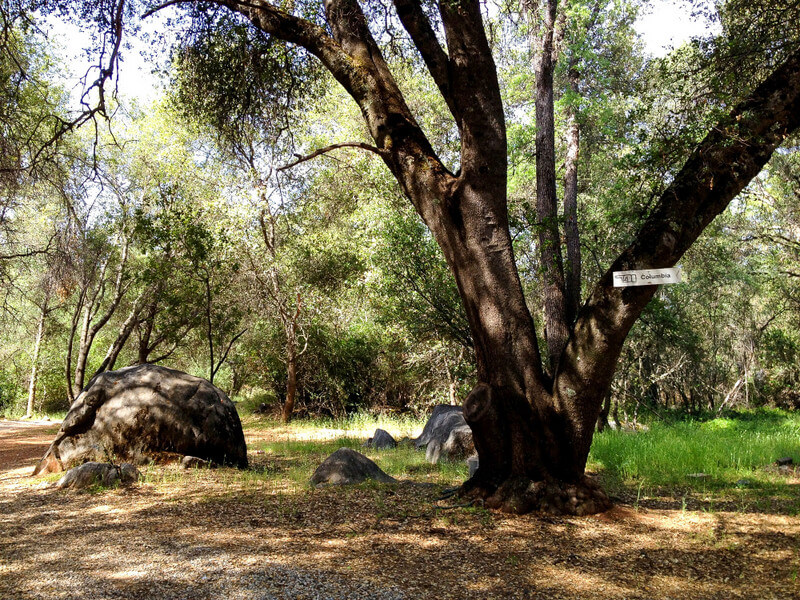 family travel gold country California
