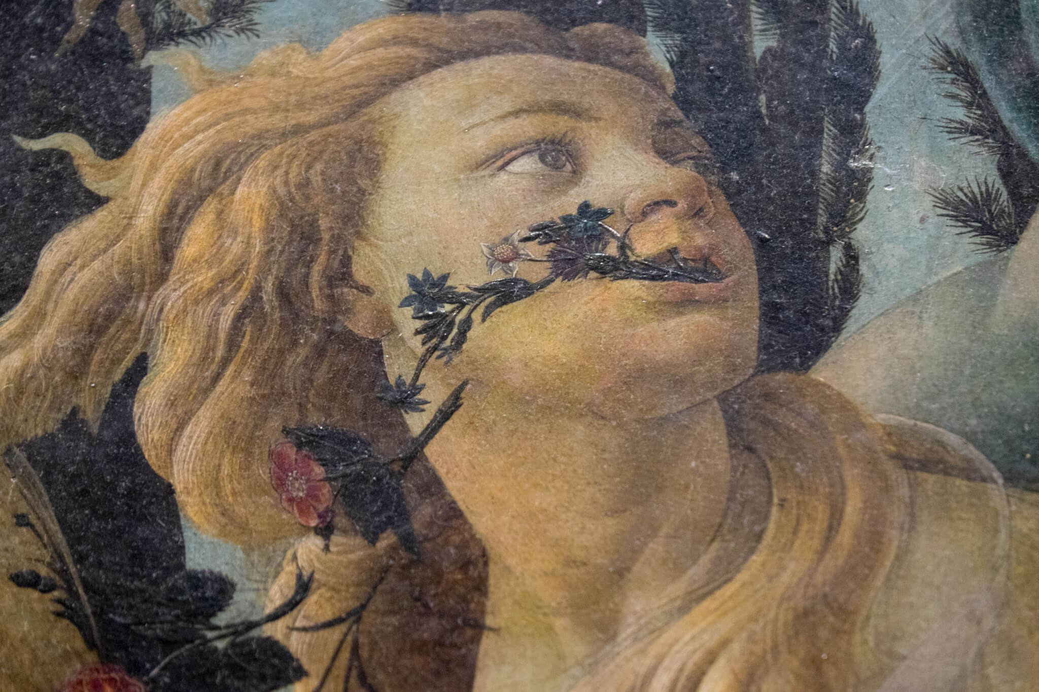 Botticelli's Primavera...And the importance of