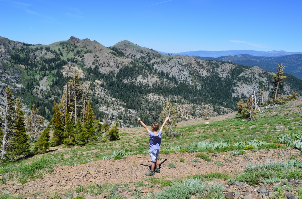 What to do in Northern California | This Is My Happiness