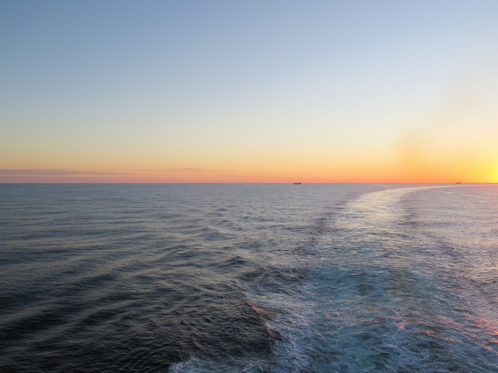 To Cruise or Not to Cruise? Tips for choosing a cruise
