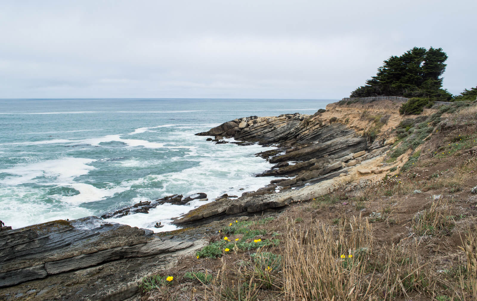 Sea Ranch, Sonoma County