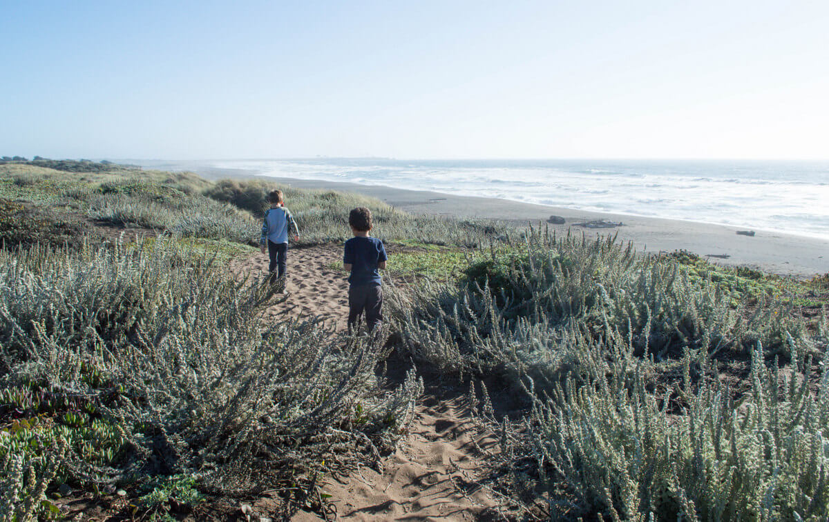What to do Point Arena Mendocino County with kids