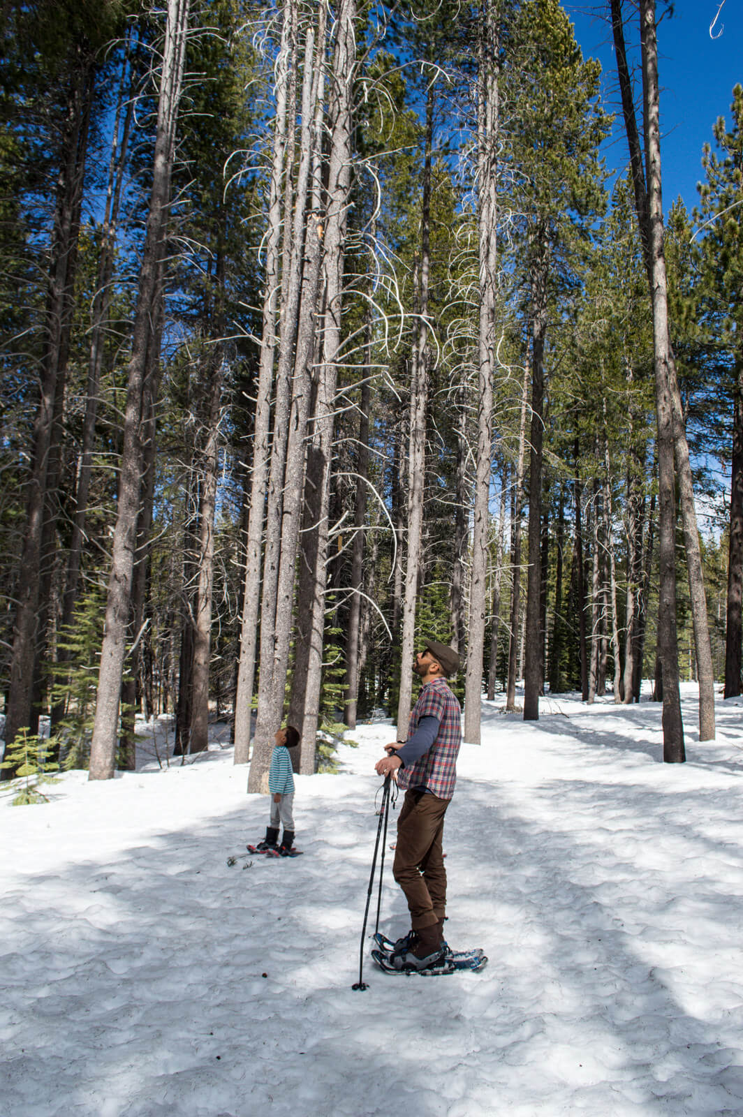 day trip Tahoe Truckee with kids