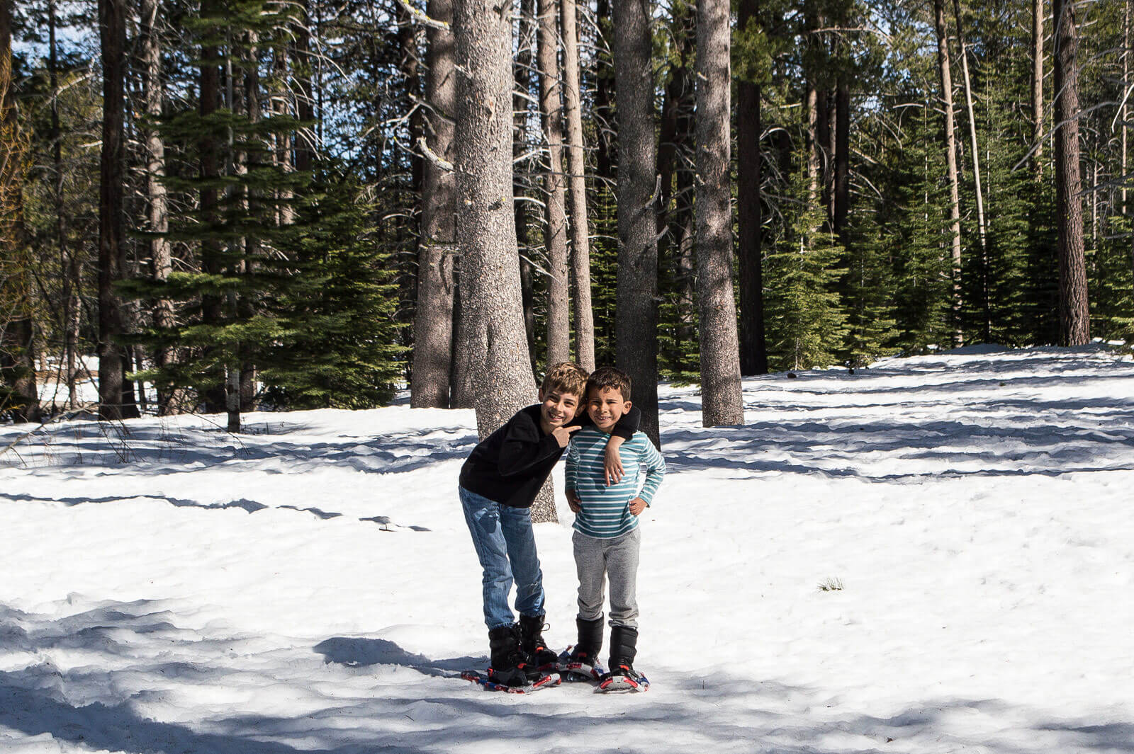 Kid friendly things to do Tahoe