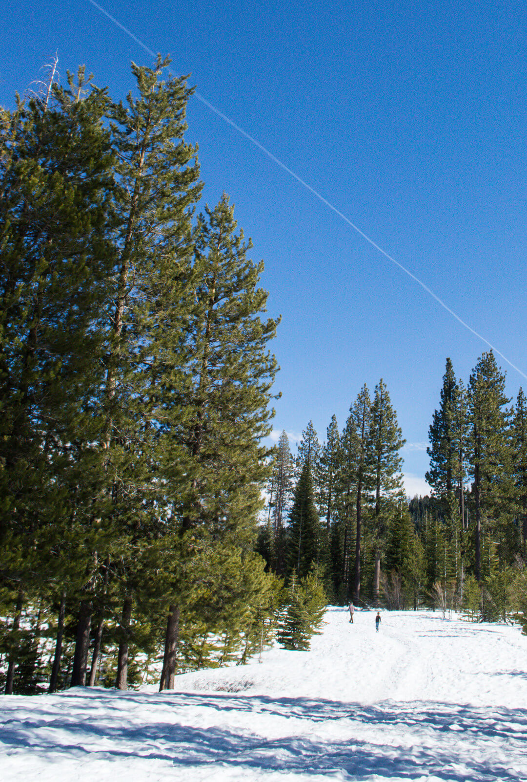 Where to snowshoe Tahoe Donner Lake Truckee | This Is My Happiness.com
