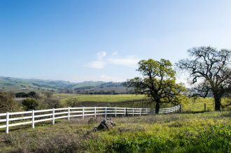What to do with kids in Napa and Sonoma