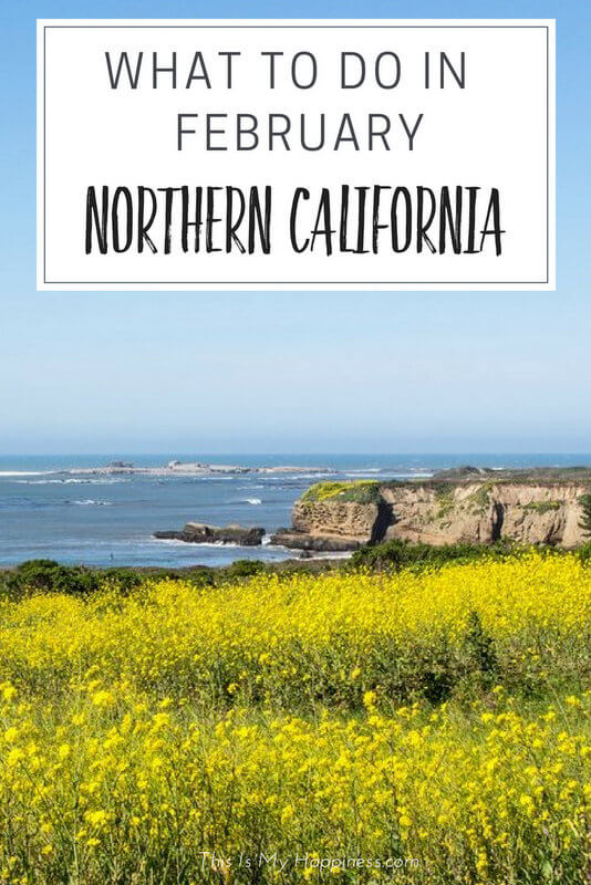 What to do in Northern California in February