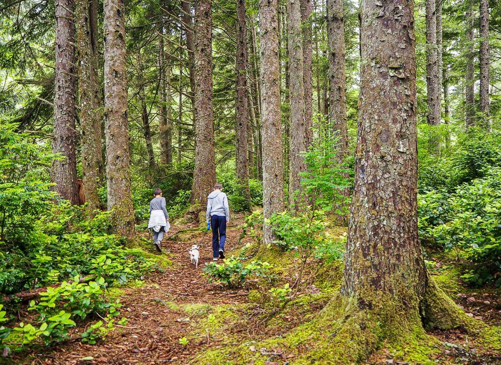 Oregon coast hike with kids